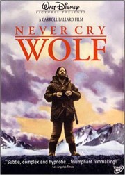 Never Cry Poster